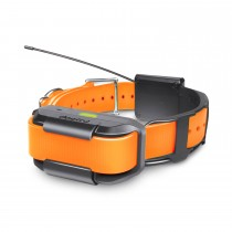 Dogtra Pathfinder Extra Collar Orange